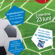 Poster_A3_Groenlevencup4